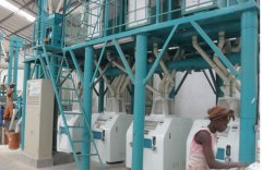 What Are the Common Problems of Maize Processing Line