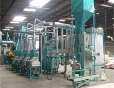 How the Maize Grits Processing Plant Functions